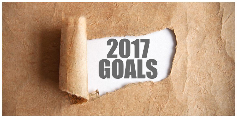 Professionele doelen voor 2017