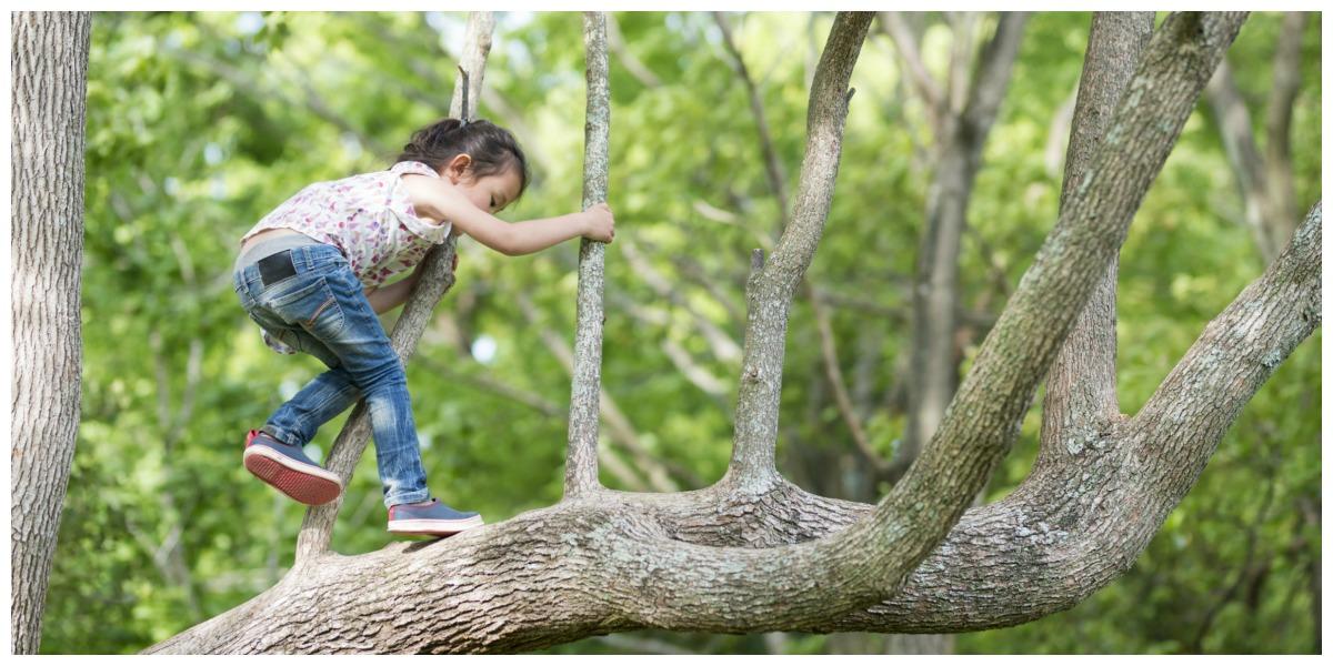 Buiten spelen voor kinderen boom klimmen