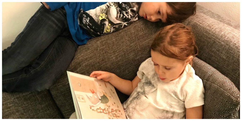 Broer en Zus kinderprentenboek