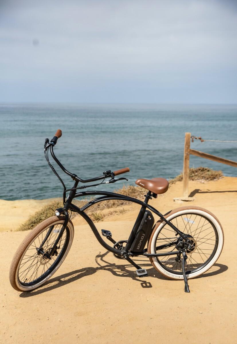 Fietsendrager voor elektrische fiets